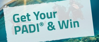 get-padi-win-email-header