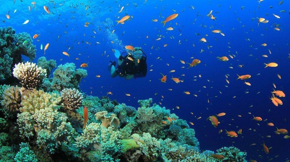 drift diving bali