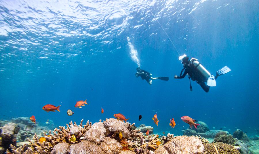drift diving DSMB